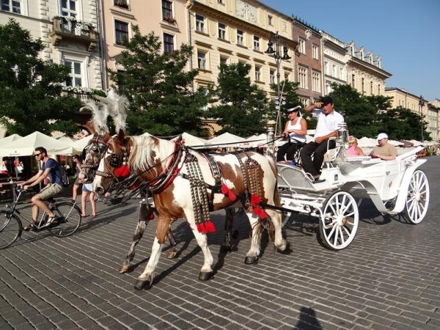 Cracovia 80
