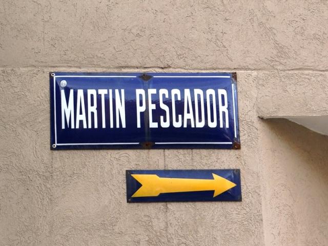 Martín Pescador 01