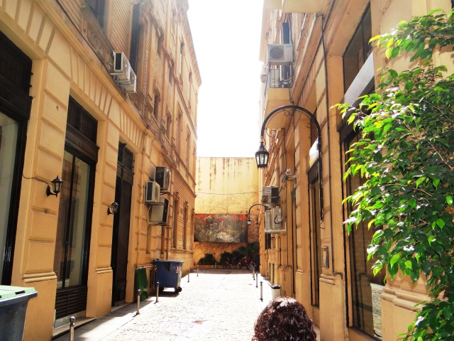 Vista el Pasaje desde la entrada este (altura Bartolomé Mitre 1563)
