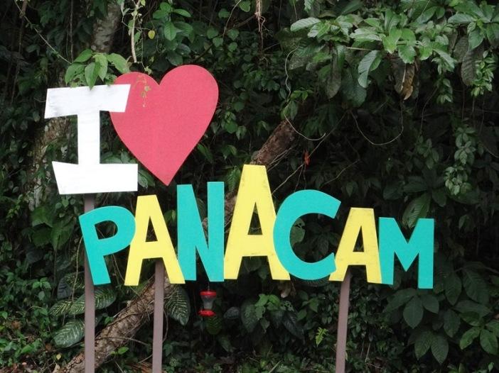 Panacam 001 DSC05520