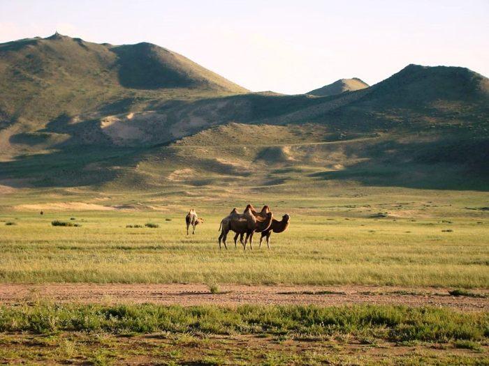 Mongolia 02