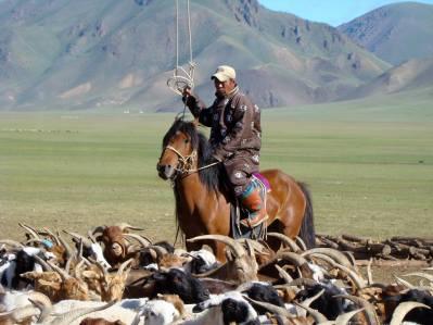 Mongolia 03.jpg